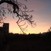 Sunset from Sfax.